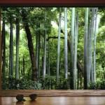 Teahouse Kyoto Japan