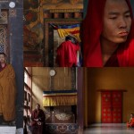 Asia Monks